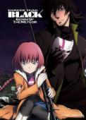 Subtitrare Darker Than Black: Gemini of the Meteor