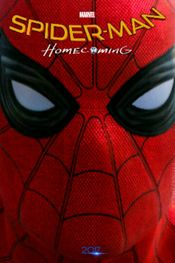 Subtitrare Spider-Man: Homecoming