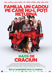Subtitrare Love the Coopers