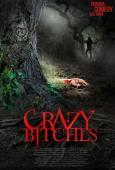 Subtitrare  Crazy Bitches HD 720p XVID