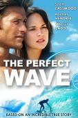 Subtitrare The Perfect Wave