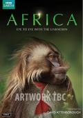 Subtitrare Africa - Sezonul 1