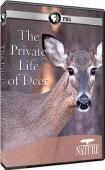 Subtitrare PBS Nature - The Private Life of Deer