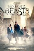 Subtitrare Fantastic Beasts and Where to Find Them