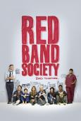 Subtitrare  Red Band Society - Sezonul 1 HD 720p