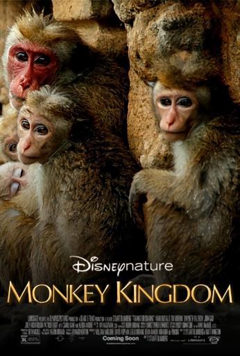 Trailer Monkey Kingdom