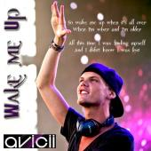 Subtitrare Avicii: Wake Me Up