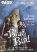 Subtitrare The Blue Bird