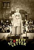 Subtitrare The Scarlet Letter