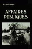 Subtitrare Les affaires publiques (Public Affairs)