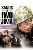 Subtitrare Sands of Iwo Jima