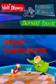 Subtitrare Grand Canyonscope