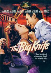 Subtitrare The Big Knife