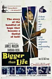 Subtitrare Bigger Than Life (One in a Million)