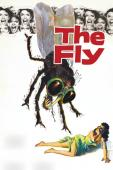 Subtitrare The Fly