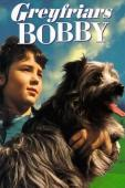 Subtitrare Greyfriars Bobby: The True Story of a Dog