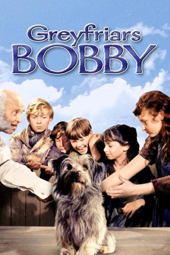 Subtitrare Greyfriars Bobby: The True Story of a Dog