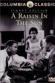 Subtitrare A Raisin in the Sun