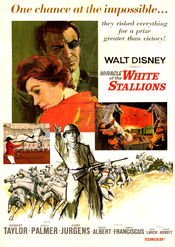 Subtitrare Miracle of the White Stallions