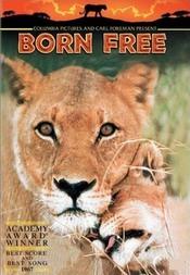 Subtitrare Born Free
