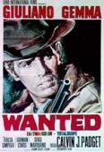 Subtitrare Wanted