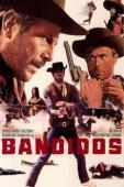 Subtitrare Bandidos