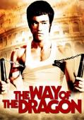 Subtitrare The Way of the Dragon (Meng long guo jiang)