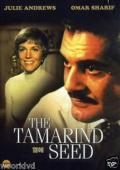 Subtitrare The Tamarind Seed
