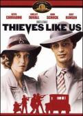 Subtitrare Thieves Like Us