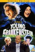 Subtitrare Young Frankenstein