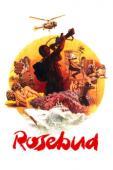 Subtitrare Rosebud (Operation Rosebud)