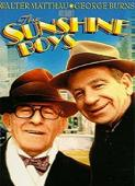 Subtitrare The Sunshine Boys