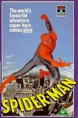 Subtitrare The Amazing Spider-Man - Sezonul 1