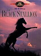 Subtitrare The Black Stallion