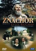 Subtitrare Znachor (Vraciul)