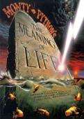 Subtitrare The Meaning of Life