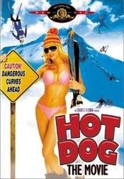 Subtitrare Hot Dog... The Movie