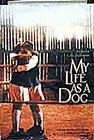 Subtitrare My Life as a Dog (Mitt liv som hund)