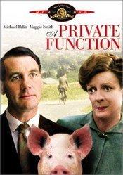 Subtitrare A Private Function