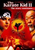 Subtitrare The Karate Kid, Part II