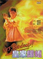 Subtitrare Yes, Madam! (Huang jia shi jie)