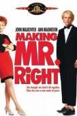Subtitrare Making Mr. Right