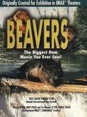 Subtitrare Beavers