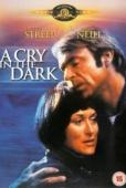 Subtitrare A Cry in the Dark (Evil Angels)