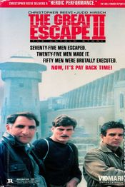 Subtitrare The Great Escape II: The Untold Story