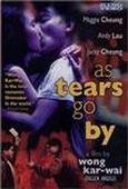 Subtitrare Wong gok ka moon (As Tears Go By)