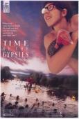 Subtitrare Time of the Gypsies (Dom za vesanje)