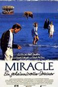 Subtitrare The Miracle