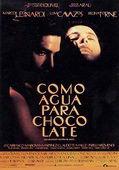 Subtitrare Like Water For Chocolate (Como agua para chocolate