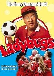Subtitrare Ladybugs